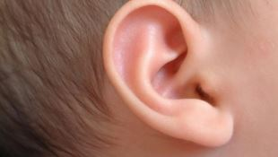 Up Close of Child's Ear